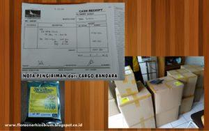 http://indonesiaorganik.id/wp-content/uploads/2017/01/juak-pupuk-rhizobium-pupuk-rhizobium-flora-one-rhizobium-produsen-rhizobium-300x188.jpg