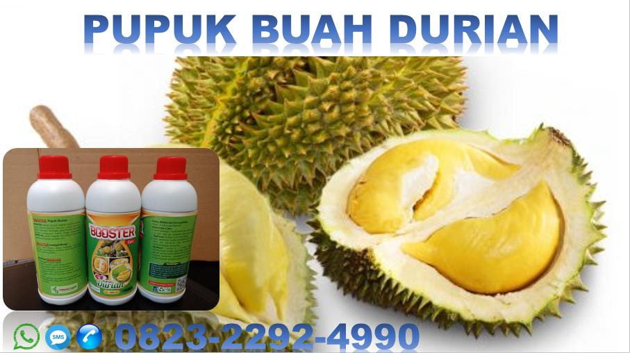 ✅DISKON_WA. 0823*2292*4990. JUAL pupuk organik durian di Pare-pare, HARGA jenis pupuk durian palopo, GROSIR jual pupuk durian Makassar