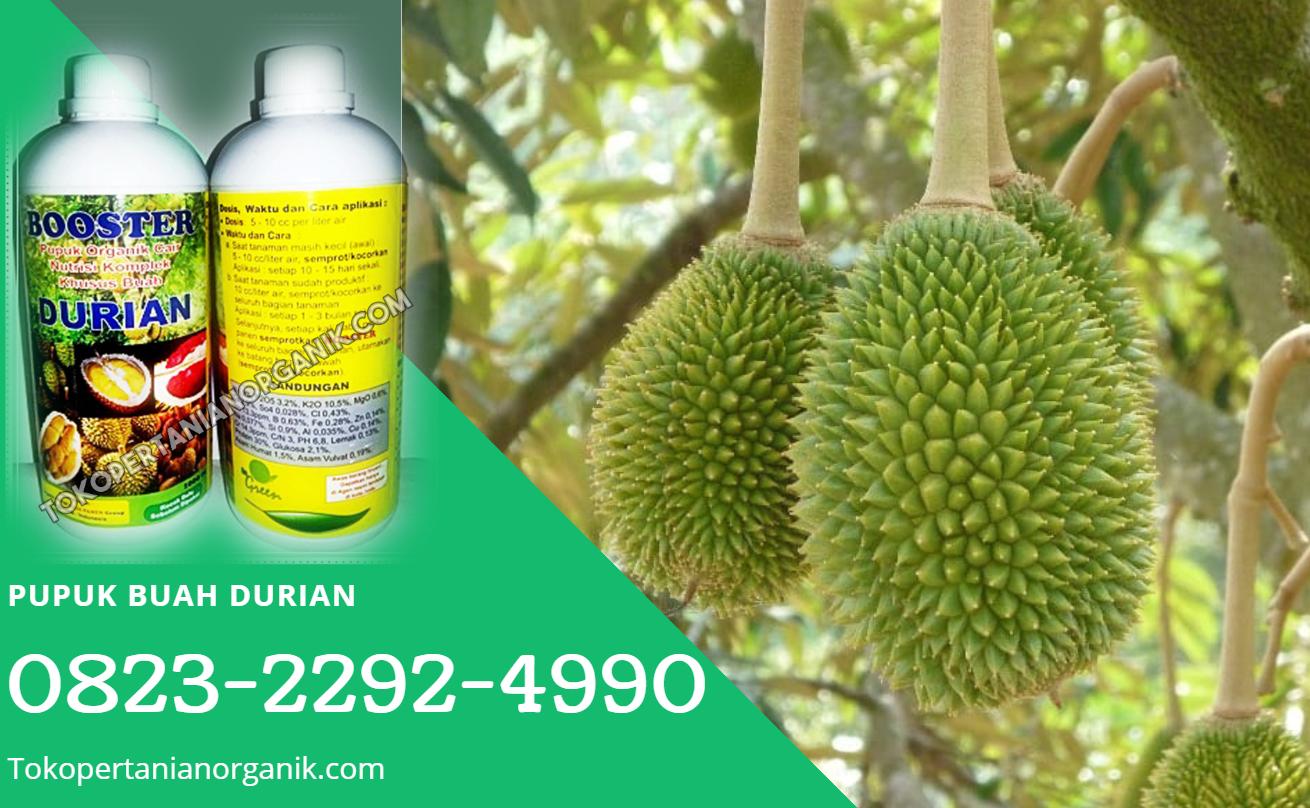 ✅DAPATKAN_0823*2292*4990. PRODUSEN pupuk durian super Pagar Alam, SUPPLIER pupuk durian saat berbunga Prabumulih, TOKOpupuk durian nasa Palembang