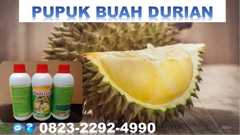 ✅DISKON_HUB: 0823*2292*4990. Harga pupuk buah durian kampung Banyuwangi, MURAH pupuk organik kilat durian Malang, jual pupuk cair kulit durian Jember