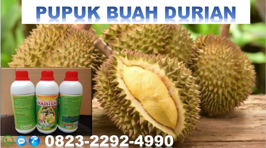 ✅SOLUSI_WA:0823*2292*4990. PRODUSEN pupuk herbafarm durian di tomohon, SUPPLIER pupuk khusus durian bitung, TOKO harga pupuk durian Manado