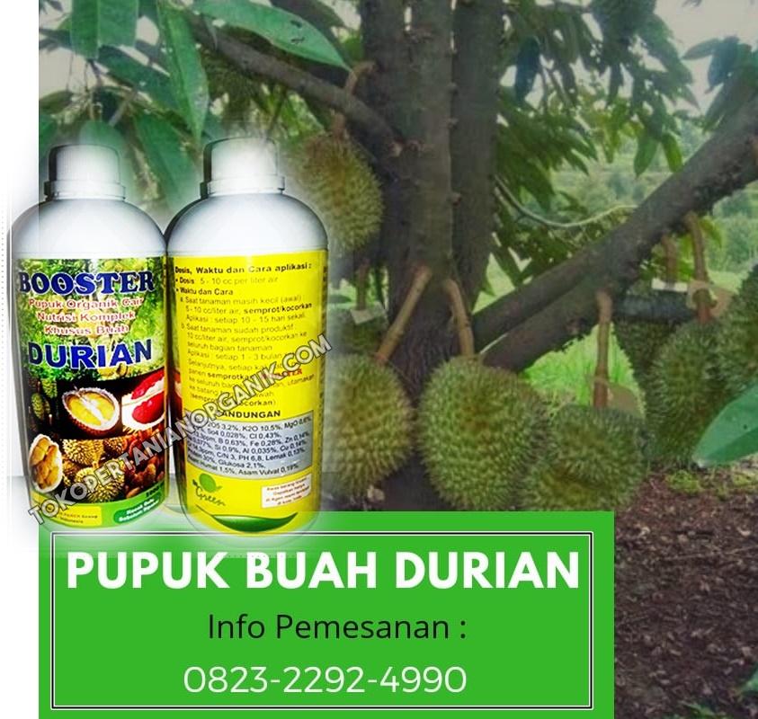 ✅HUB/TLP. 0823*2292*4990. JUAL pupuk durian yang baru ditanam Gorontalo, GROSIR pupuk durian berbuah di luar musimboalemo, AGENpupuk nongfeng durian Bone Bolango