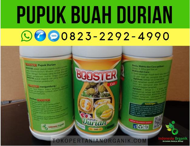 ✅TERBAIK_WA. 0823*2292*4990. jual pupuk buah durian di Metro, AGEN pupuk cair durian kampung Bandar Lampung, Harga pupuk organik kilat durian Kota Bumi