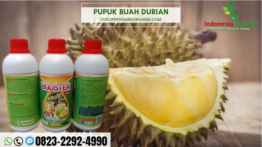 ☑️AMANAH..//o823*2292*499o. JUAL pupuk durian yang baru ditanam DI Bandung Barat , GROSIR pupuk durian berbuah di luar musim Bekasi, AGEN pupuk nongfeng durian Bogor