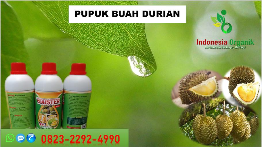 ☑️PENAWARAN. TLP…// o823*2292*499o. AGEN pupuk durian agar cepat berbuah Surakarta, MURAH pupuk durian cepat berbuah Tegal, DISTRIBUTOR pupuk durian agar berbuah lebat Salatiga