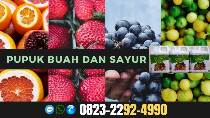 ☑️TERMURAH..//WA: o823*2292*4990. ☑️JUAL pupuk pohon manggis Gorontalo, GROSIR pupuk tanaman manggis Kwandang, AGEN pupuk organik untuk tanaman manggis Buntok