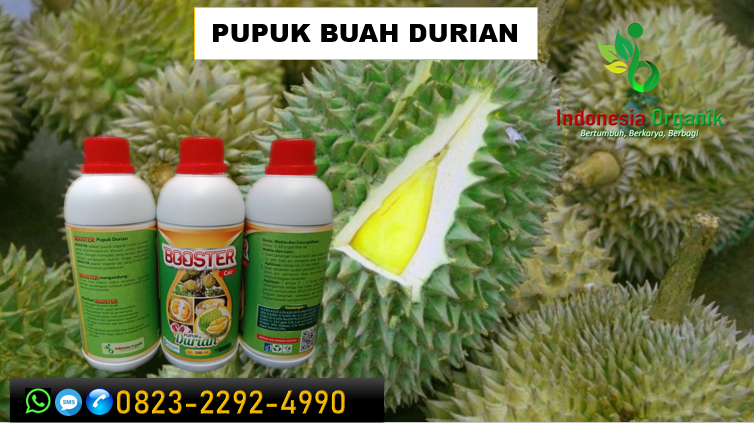 ✅SOLUSI..//TLP: o823*2292*499o. TOKO pupuk perangsang buah durian diluar musim di Sukabumi, TEMPAT pupuk untuk daun durian Tasikmalaya, JUAL pupuk durian yang baru ditanam Bandung Barat
