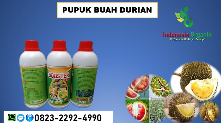 ☑️SPECIAL..//HUB: o823*2292*499o. MURAH garam pupuk durian Ciamis, DISTRIBUTOR pupuk durian hantu Cianjur, PRODUSEN pupuk herbafarm durian Cirebon