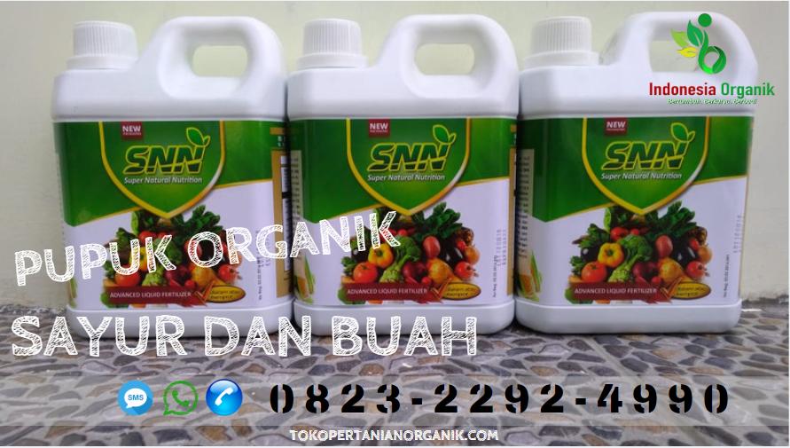 ☑️AGRARIA..// 0823*2292*4990. ☑️TEMPAT pupuk sayuran organik Tangerang, JUAL pupuk sayur sawi Tigaraksa, GROSIR pupuk sayur organik Cilegon