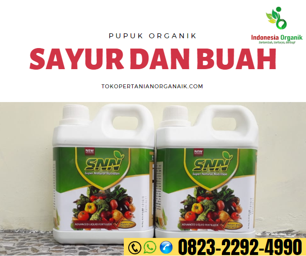 MELIMPAH..!! HUB. o823*2292*499o, PRODUSEN pupuk untuk manggis Sumedang, SUPPLIER pupuk yang bagus untuk manggis Tasikmalaya, TOKO manfaat buah manggis Bandung