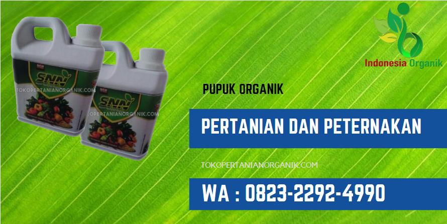 ✅AMAN..//o823*2292*499o. ✅DISTRIBUTOR pupuk padi Aceh, PRODUSEN pupuk CAIR padi 2 Banda Aceh, SUPPLIER pupuk padi Aceh Barat