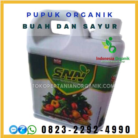 ☑️AMAN_o823*2292*499o. DISTRIBUTOR pupuk akar padi Singkil, PRODUSEN pupuk untuk padi asem aseman Aceh Tamiang, Pupuk Organik di Aceh