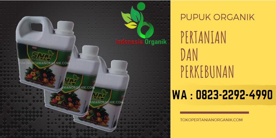 ✅SPECIAL..//o823*2292*499o. ✅SUPPLIER pupuk faxin padi Aceh Barat, TOKO harga pupuk Alami padi Meulaboh, TEMPAT jenis pupuk padi dan fungsinya Aceh Barat Daya