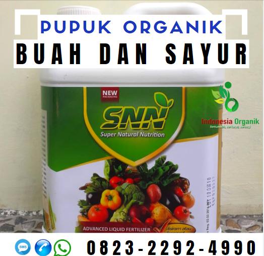 ☑️AMANAH..//o823*2292*499o. JUAL Pupuk Organik Cair di Semarang, HARGA Pupuk Tanaman Di Ponorogo, AGEN Pupuk Untuk Buah Di Makassar
