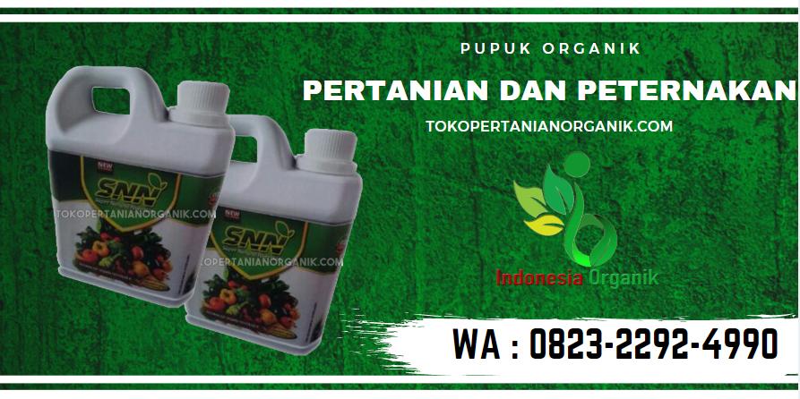 DAPATKAN..//o823*2292*499o. TOKO harga pupuk Alami padi Meulaboh, TEMPAT jenis pupuk padi dan fungsinya Aceh Barat Daya, JUAL fungsi pupuk padi Blangpidie