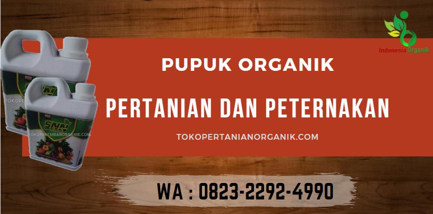 ✅PENAWARAN..//o823*2292*499o. ✅TEMPAT jenis pupuk padi dan fungsinya Aceh Barat Daya, JUAL fungsi pupuk padi Blangpidie, GROSIR pupuk padi gogo Aceh Besar