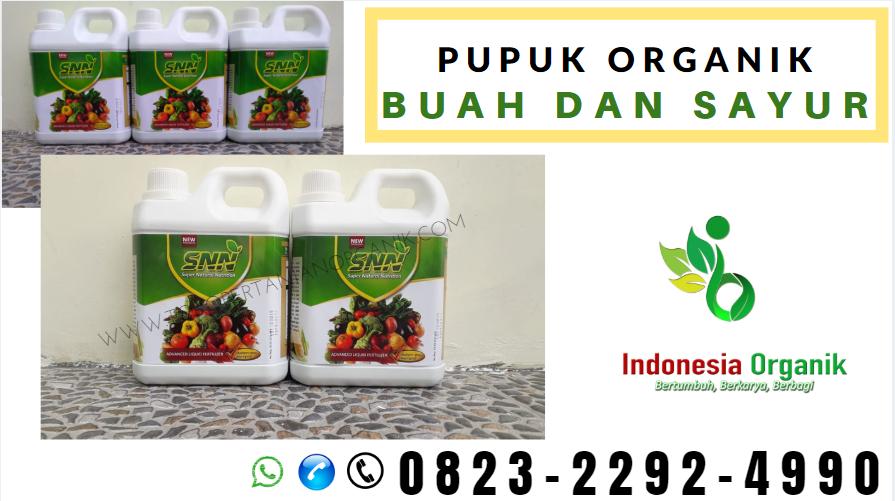 ☑️TERBATAS_o823*2292*499o. JUAL pupuk untuk padi asem aseman Aceh Tamiang, SUPPLIER pupuk memperbanyak anakan padi Karang Baru, Pupuk Cair di Aceh