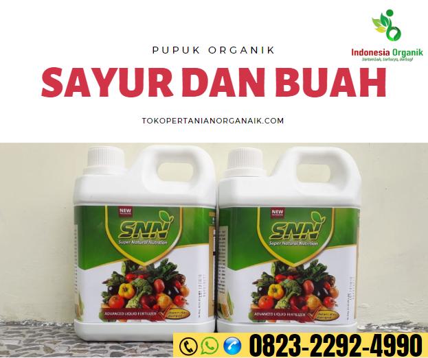 ✅ONLINE..// o823*2292*499o. ✅TEMPAT jenis pupuk padi dan fungsinya Aceh Barat Daya, JUAL fungsi pupuk padi Blangpidie, GROSIR pupuk padi gogo Aceh Besar