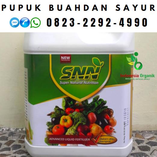 ✅HARI INI: 0823*2292*4990. ✅DISTRIBUTOR pupuk padi dari nasa Fakfak, HARGA pupuk cair padi di Fakfak, JUAL pupuk padi organik Fakfak