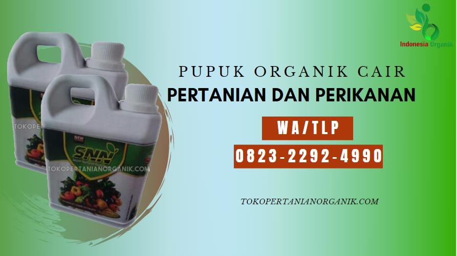 ✅PROMO//0823*2292*4990. ✅JUAL pupuk padi awal tanam Waisai, HARGA pupuk untuk padi di Waisai, DISTRIBUTOR pupuk agar padi bernas Teluk Bintuni