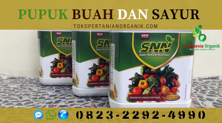 ✅TERBARU..!!0823*2292*4990. ✅DISTRIBUTOR pupuk padi ciherang Maluku Tenggara, PRODUSEN pupuk padi yg bagus Langgur, JUAL pupuk pintar di Maluku Tenggara