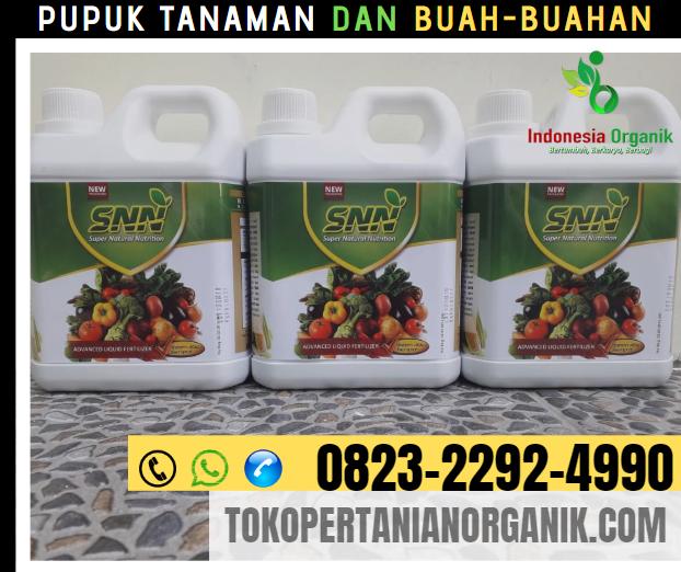 ✅HARI INI ..!!0823*2292*4990. ✅AGEN pupuk padi dari nasa Maluku Tenggara Barat, MURAH pupuk padi organik Saumlaki, DISTIIBUTOR pupuk di Maluku tenggara Barat