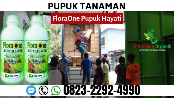 ✅SPECIAL_0823*2292*4990. AGEN pupuk hayati serbuk Gerung, SUPPLIER pupuk hayati serbuk Lombok Tengah, PRODUSEN pupuk hayati cair Praya