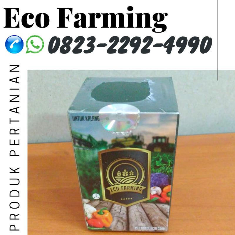 ✅PENAWARAN_0823*2292*4990. JUAL pupuk eco farming hama nasa Makassar, DISTRIBUTOR pupuk eco farming hama anggrek Kepulauan Selayar, HARGA pupuk eco farming hama cabe Benteng