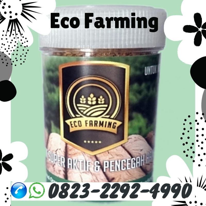 ✅LIMITED_0823*2292*4990. HARGA pupuk eco farming hama cabe Benteng, AGEN pupuk eco farming hama daun Bulukumba, PRODUSEN pupuk eco farming hama pos Bulukumba