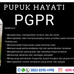 HARGA pupuk hayati jagung Pesisir Selatan, AGEN pupuk hayati terbaik Jambi, SUPPLIER pupuk hayati cair melon Kerinci, GROSIR pupuk hayati cair simbios Bengkulu, JUAL pupuk hayati padi Bengkulu Selatan, DISTRIBUTOR pupuk hayati tricotech cabe Palembang, HARGA pupuk hayati Khusus Lada Banyuasin, AGEN pupuk Dekomposer hayati Riau, SUPPLIER pupuk hayati Trico Z Pekan Baru, DISTRIBUTOR pupuk hayati sawit Padang