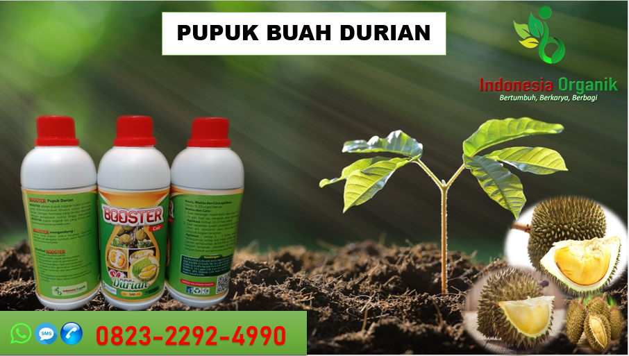 ✅SPECIAL_TLP. 0823*2292*4990. Agen pupuk organik kilat durian di Prabumulih, jual pupuk kulit durian Palembang, PRODUSEN pupuk kocor durian Pagar Alam