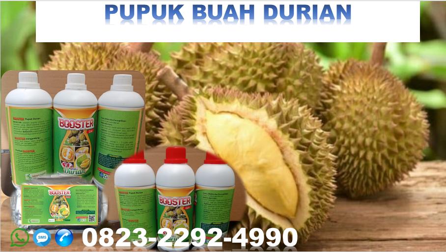 ✅MURAH_HUB:0823*2292*4990. Harga pupuk CAIR durian DI Purwokerto, harga pupuk durian agar cepat berbuah Magelang, JUAL pupuk durian montong Purworejo