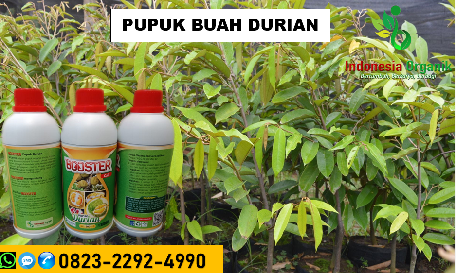 ☑️               PROMO..//HUB: O823*2292*499O. TEMPAT pupuk injeksi durian Kuningan, JUAL jenis pupuk durian Majalengka, GROSIR jual pupuk durian Pangandaran