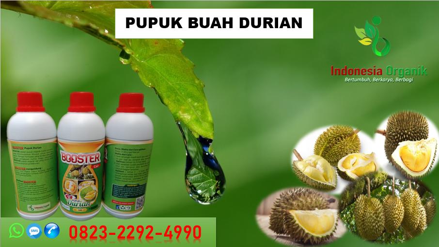 ✅DISKON..//HUB: 0823–2292–4990, JUAL pupuk cair durian di Bekasi, GROSIR pupuk untuk durian cepat berbuah Bogor, AGEN pupuk supaya durian cepat berbuah Cimahi