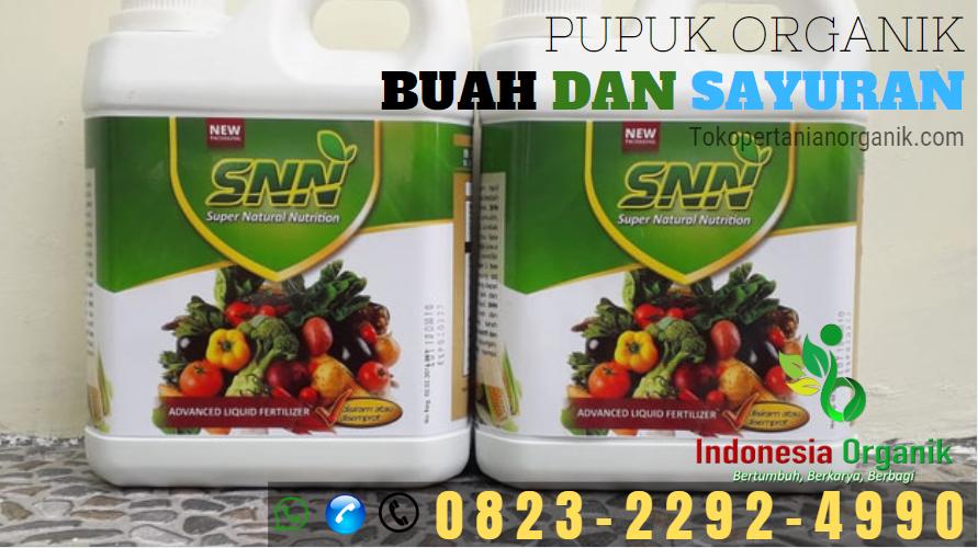 ✅DISKON: 0823*2292*4990.✅ JUAL pupuk padi dari nasa Halmahera Utara, DISTRIBUTOR pupuk padi alamai di Halmahera Utara, HARGA pupuk padi organik Tobelo