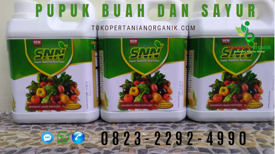 ✅AMANAH..// 0823*2292*4490. ✅HARGA pupuk sayur buncis di Tangerang, DISTRIBUTOR pupuk buat sayur Tangerang Selatan, PRODUSEN pupuk buah sayur Banten