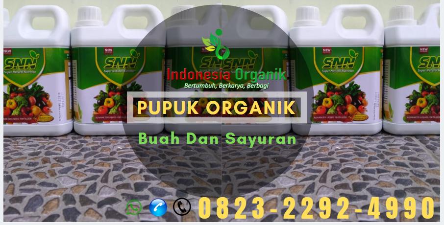 ✅SPECIAL..// o823*2292*499o. ✅MURAH pupuk padi fase generatif Kota Subulussalam, DISTRIBUTOR pupuk cair padi Aceh, PRODUSEN pupuk cair padi 2 Banda Aceh, SUPPLIER pupuk faxin padi Aceh Barat
