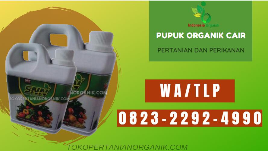 ✅TERBARU..// 0823*2292*4490 ✅JUAL pupuk sayur terbaik di Banten, PRODUSEN pupuk buah sayur Banten, SUPPLIER pupuk buah sayuran Serang