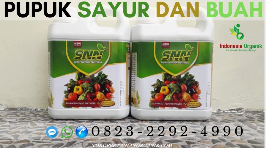 ✅DAPATKAN..// o823*2292*499o. ✅DISTRIBUTOR pupuk cair padi Aceh, PRODUSEN pupuk cair padi 2 Banda Aceh, SUPPLIER pupuk faxin padi Aceh Barat, TOKO harga pupuk cair padi Meulaboh