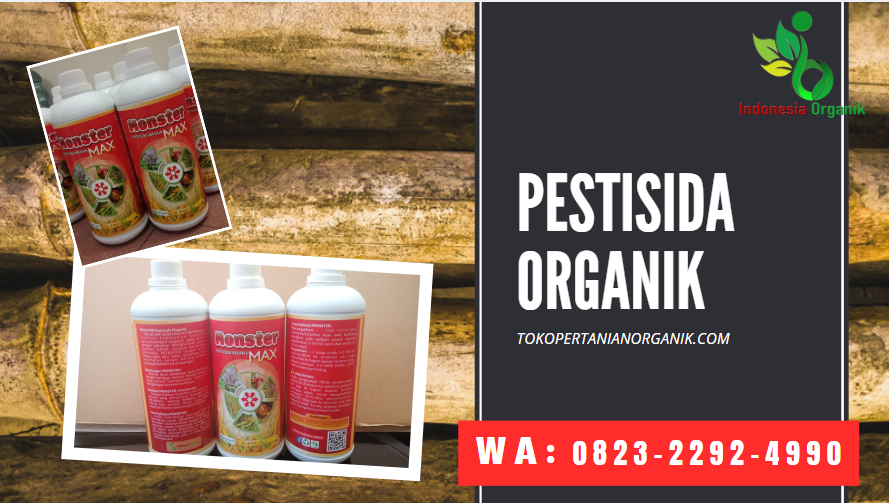 ✅HUB/WA__0823*2292*4990. JUAL pestisida organik cair di Medan, HARGA pupuk hama daun cair di Medan, DISTRIBUTOR pupuk hama cabe alami Tapanuli Tengah
