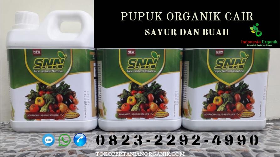 ✅TERBARU_0823*2292*4990 PRODUSEN pupuk padi yg bagus Jayapura, TOKO pupuk padi dari nasa Sentani, MURAH pupuk padi organik Nabire, TEMPAT pupuk padi alami Nabire