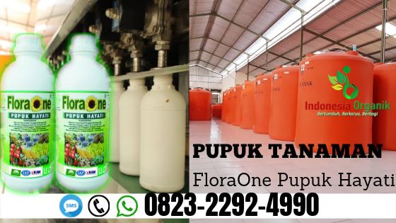 ✅TERJANGKAU_WA: 0823*2292*4990. Harga pupuk hayati terbaik Banda Aceh, Distributor pupuk hayati sayur Aceh Barat, AGEN pupuk hayati buah Meulaboh