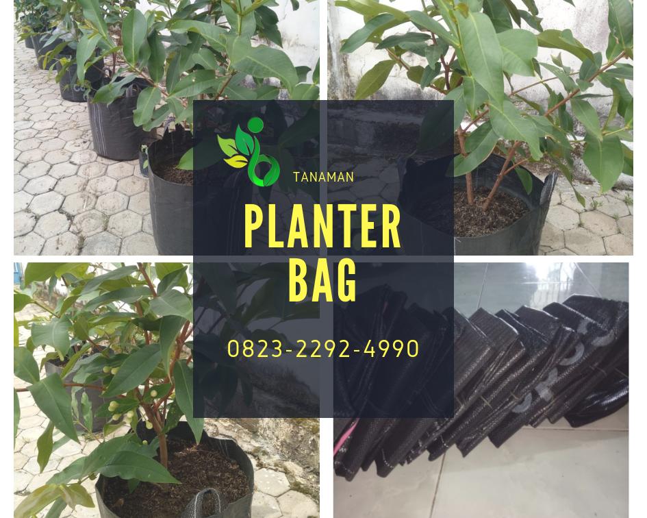 AMANAH_0823*2292*4990. Distributor planter bag surabaya,AGEN planter bag malang, HARGA planter bag jakarta