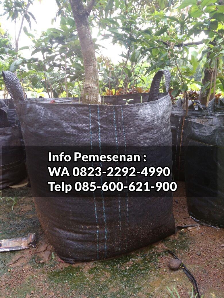 DAPATKAN_0823*2292*4990. PRODUSEN planter bag tokopedia, PROMO planter bag di jakarta, JUAL planter bag murah
