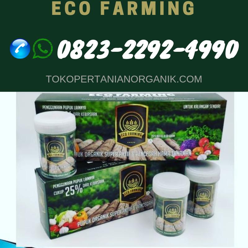 ✅SOLUSI_0823*2292*4990. AGEN pupuk eco farming hama daun Bulukumba, PRODUSEN pupuk eco farming hama pos Bulukumba, TEMPAT pupuk eco farming hama tanaman Bantaeng