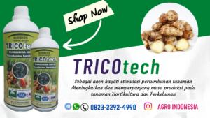 JUAL pupuk cair untuk kencur Rangkasbitung, DISTRIBUTOR pupuk cair untuk bawang merah Pandeglang, HARGA pupuk cair untuk padi sawah Banyumas, AGEN pupuk cair untuk porang Purwokerto, SUPPLIER pupuk cair untuk bawang daun Gunungkidul, AGEN pupuk cair untuk kapulaga Wonosari, HARGA pupuk cair untuk memperbanyak anakan padi Jakarta Pusat, AGEN pupuk cair untuk padi Kepulauan Seribu, SUPPLIER pupuk cair untuk padi bunting Bandung Barat, AGEN pupuk cair untuk jagung Ngamprah