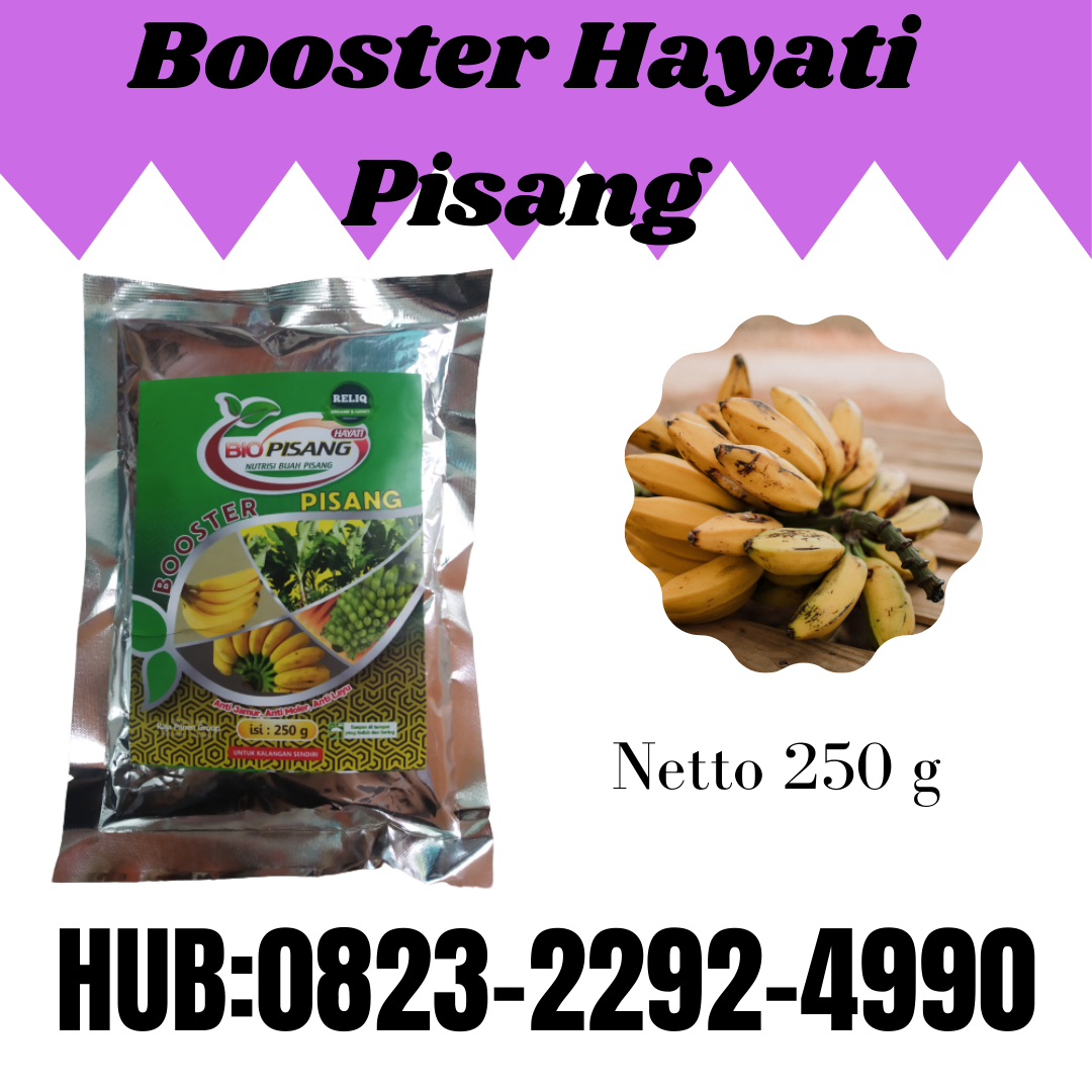 ORGANIK!0823-2292-499O. DISTRIBUTOR pupuk hayati pisang anti penyakit Cakung, JUAL pupuk hayati pisang anti layu jamur Jakarta Utara, AGEN pupuk hayati pisang yang bagus Pulau Pramuka